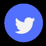 twitter icon-bird