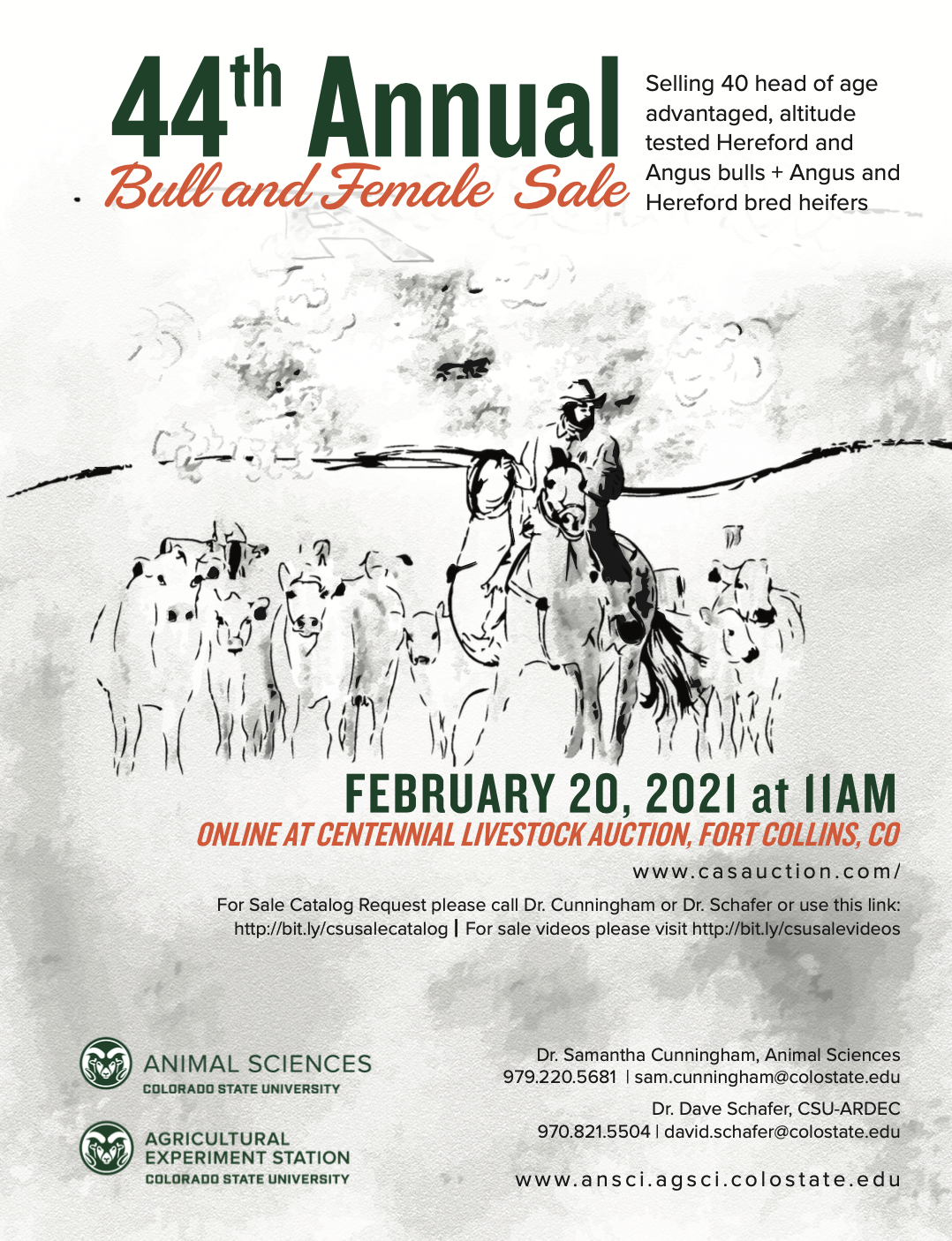 bull sale flyer