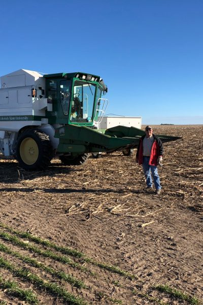 Extension Agent Ron Meyer helping with sunflower harvest