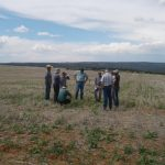 Cover Crop Tour at Steve Barry's Field