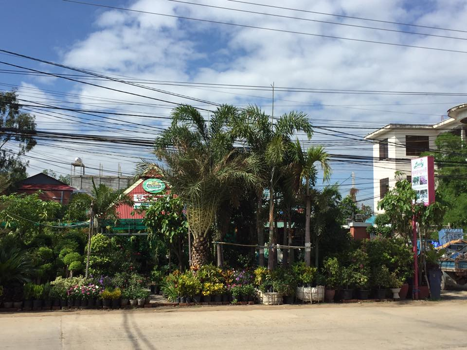 cambodian garden store