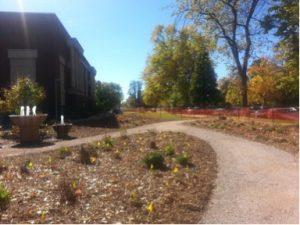 perennial garden picture
