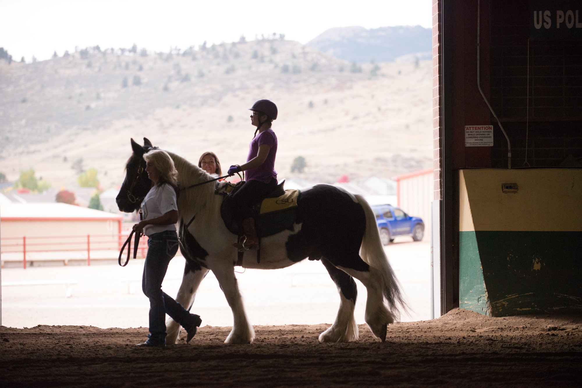 Physical Therapists work with clients doing equine-assisted therapy at the CSU Equine Center. October 15, 2014