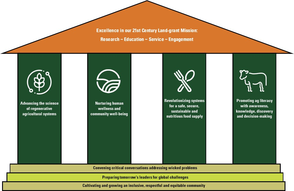 CAS Strategic Plan structure graphic
